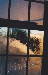 Winter Frost on Window